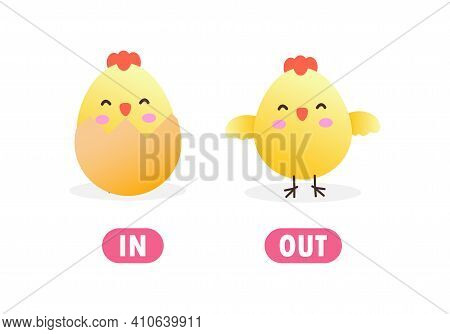 Opposite In And Out Words Antonym For Children With Cartoon Characters Cute Little Chick, Funny Anim