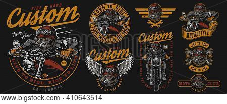 Motorcycle Vintage Colorful Labels Set With Inscriptions Wrenches Angry Wild Boar Motorcyclist In He