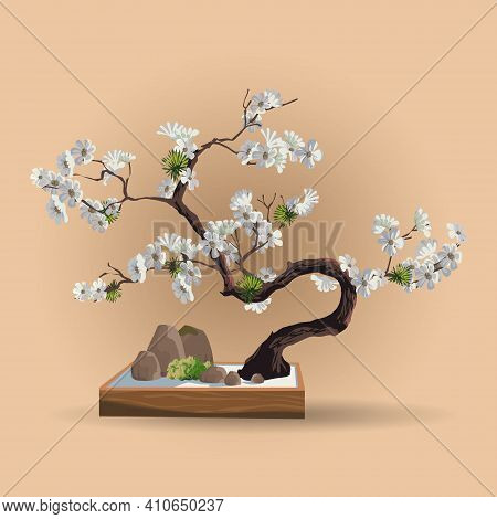 Tree In Bonsai Style. Bonsai Tree With White Sakura Flowers On The Low Box. Decorative Little Tree V