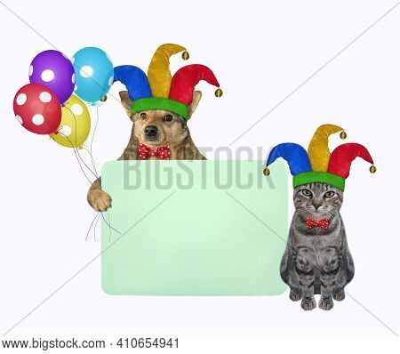 Pets Clowns In Jester Hats Is Holding A Green Blank Poster. April Fool's Day. White Background. Isol