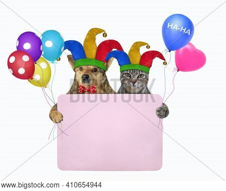 Pets Clowns In Jester Hats Is Holding A Pink Blank Poster. April Fool's Day. White Background. Isola