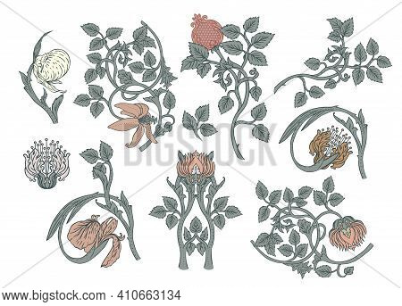 Floral Vintage Elements. Enchanted Vintage Flowers. Vector Design Elements. Isolated On White.