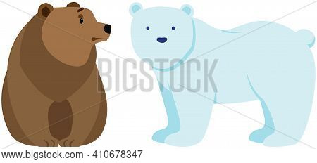Polar And Brown Bears Side View. Wild Animals Vector Illustration. Large Mammals With White And Dark