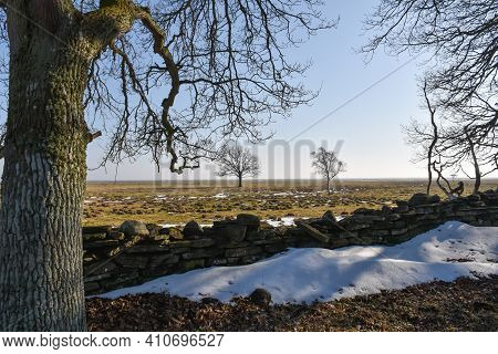 Springtime View At The Great Fields By Ottenby On The Island Oland In Sweden