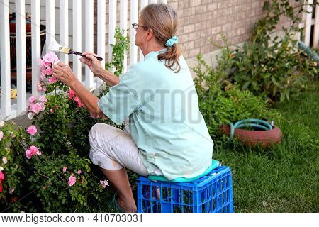 Mature Female Senior Painting Front Gate To Her House Outside.