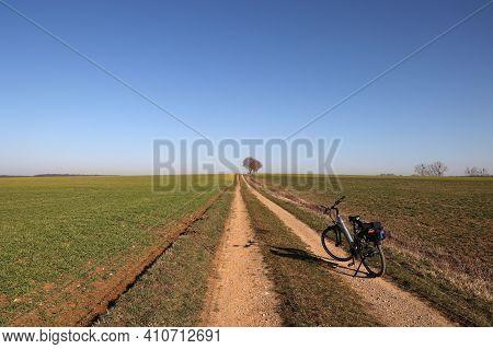 First Spring Bike Rides Among Green Fields
