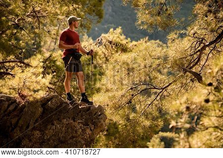 Male Tourist Stands On Edge Of Cliff Surrounded By Green Pine Branches