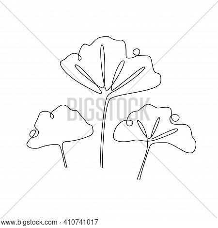 Ginkgo Biloba Continuous One Line Drawing. Abstract Botany Minimalist Poster. Vector Illustration Fo
