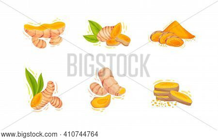 Turmeric Plant With Root And Powder Pile Vector Set