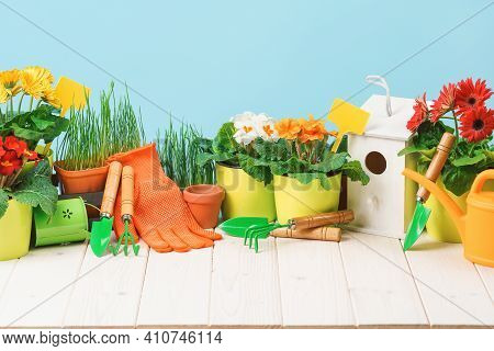 Gardening Tools And Flower Pots With Blooming Plants On White Wooden Terrace In The Garden. Spring O