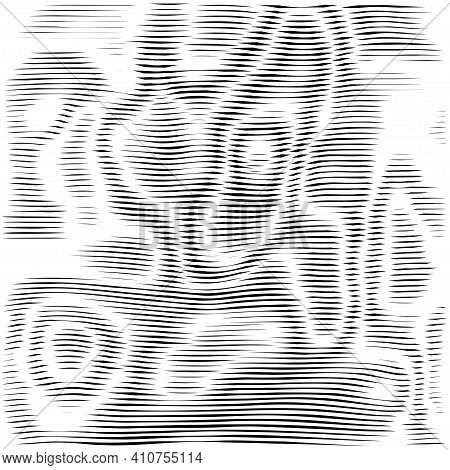 Moire Black Vector Background. Moire Texture Wavy Lines Optical Illusion Abstract Background. Digita
