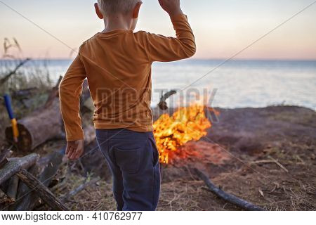 Family Local Getaway. Kid Gathering Wooden Logs For Bonfire At Campsite, Overnight In The Wild Natur