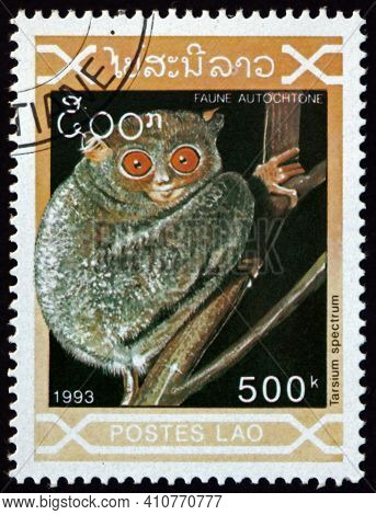 Laos - Circa 1993: A Stamp Printed In Laos Shows Spectral Tarsier, Tarsium Spectrum, Is A Species Of