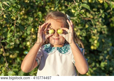 Girl With Apple Holding In Front Of Her Face In The Apple Orchard. Beautiful Girl Eating Organic App