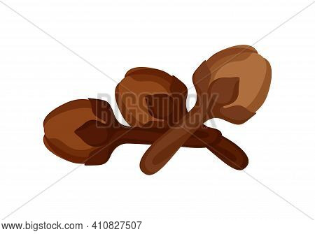 Clove Isolated On White, Dried Clove, Clip Art Clove