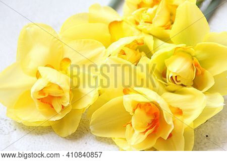Yellow Daffodils, Cut Flowers, A Bouquet Of Spring Flowers, Daffodils With An Orange Center