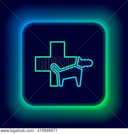 Glowing Neon Line Veterinary Clinic Symbol Icon Isolated On Black Background. Cross With Dog Veterin