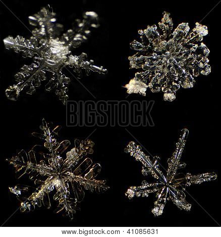 Snowflake Under A Microscope On The Black Background