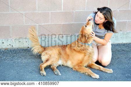 Female Beauty Feeding Her Golden Retriever A Hot Dog Outside.