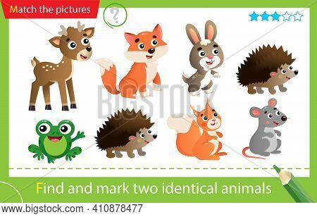 Find And Mark Two Identical Animals. Puzzle For Kids. Matching Game, Education Game For Children. Co