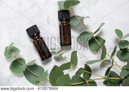 Eucalyptus Essential Oil Bottles And Fresh Eucalyptus Branch On Marble Background. Natural Cosmetic