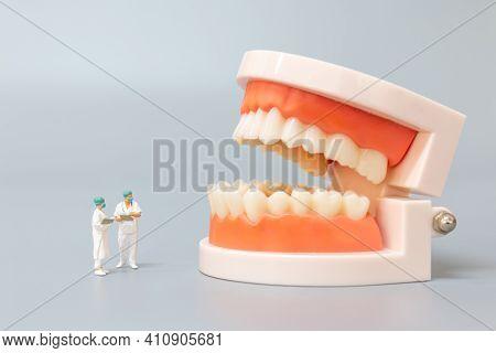 Miniature People : Dentist Repairing Human Teeth With Gums And Enamel