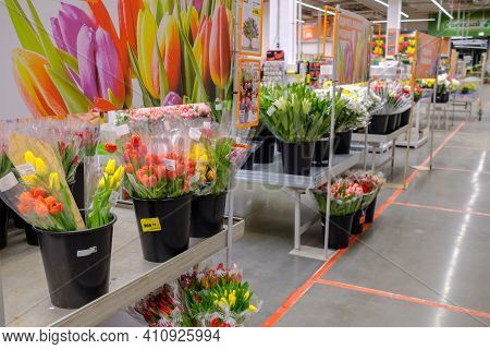 Moscow. Russia. 04 March 2021. Bouquets Of Multicolored Tulips, Packed In Transparent Cellophane Wra