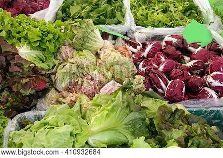 Leafy Greens Vegetables Salads At Farmers Market Stall