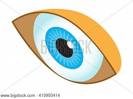 Human Eye Isometric Icon Vector. Isometric Medical Ophthalmologist Eyesight Sign. 3d Human Organ Sym