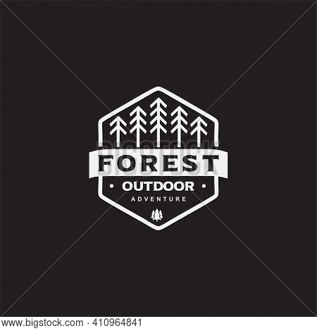 Simple Flat Pine Forest Logo Designs Concept Vector. Line Pine Tree Logo Template. Vintage Camping A