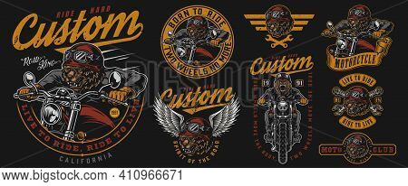 Vintage Motorcycle Badges Collection With Angry Bear Biker Wrenches Grizzly Head In Motorcyclist Hel
