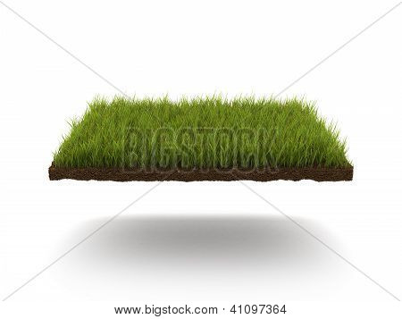Green lawn isolated on a white background poster