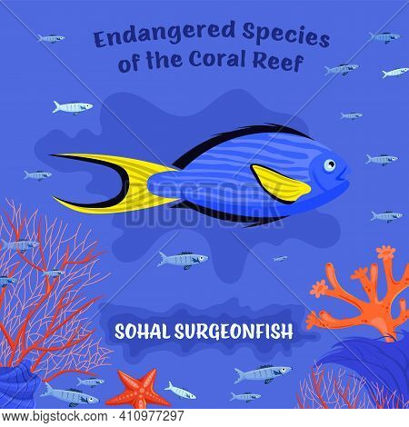 Coral Reef Inhabitants. Endangered Fish Species. Threatened Fish Stocks. Sohal Surgeonfish. Save The