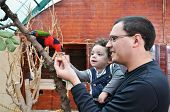 Portrait of happy father and his little daughter feeding parrot poster