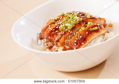 eel on rice,unaju, japanese unagi cuisine