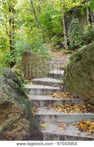 Staircase In A Forest In Autumn