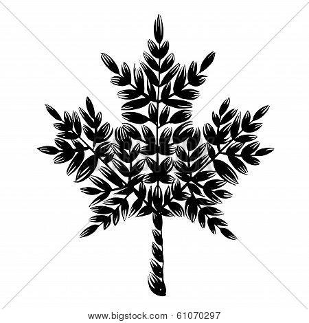Decorative Silhouette Maple Leaf