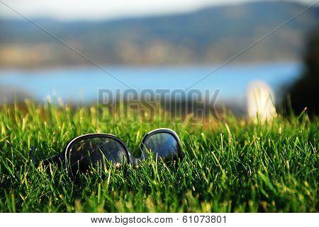 sunglass on grass