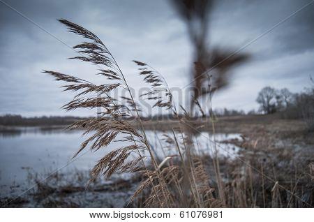 Russian autumn lake.
