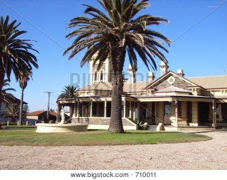 Palmtree Villa