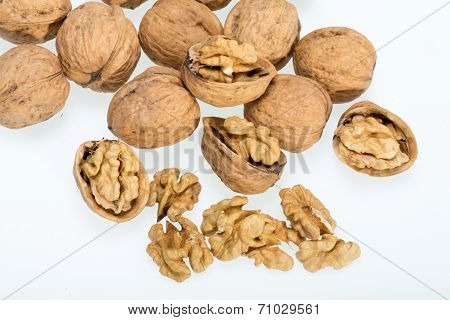 walnut and a cracked walnut isolated on the white background poster