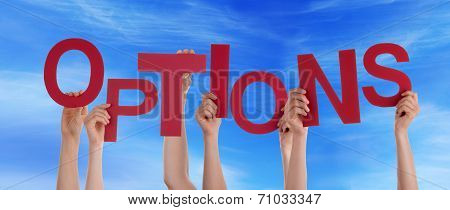 Hands Holding options in front of the Sky