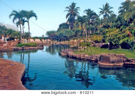 Hawaiian resort pool