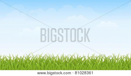 Grass and Sky -- Seamless