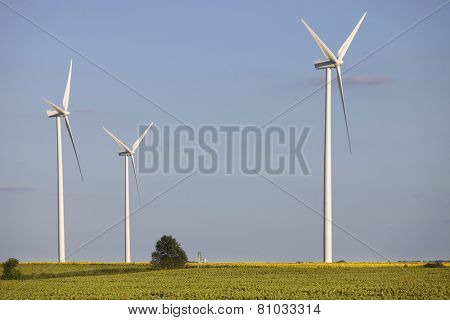 farm of windturbines in the north of France