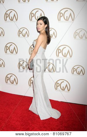 LOS ANGELES - JAN 24:  Christian Serratos at the Producers Guild of America Awards 2015 at a Century Plaza Hotel on January 24, 2015 in Century City, CA
