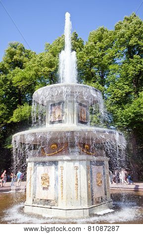 Petrodvorets. Fountain . Close up in a sunny day