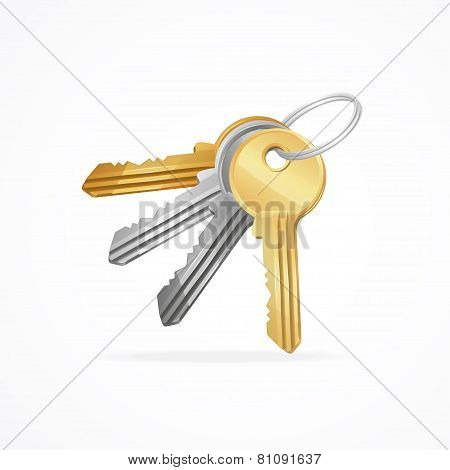 Vector Golden, silver, bronze, metal Keys bunch