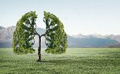 Conceptual image of green tree shaped like human lungs poster