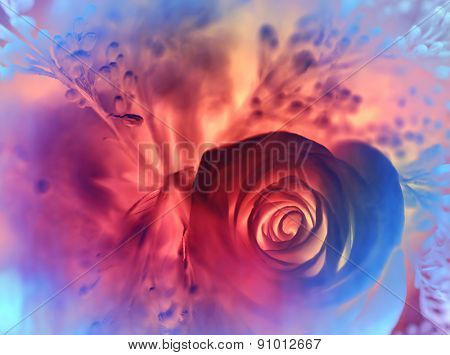 Dreamy rose background, abstract festive colorful floral card, stylish greeting card, amazing flowers wallpaper